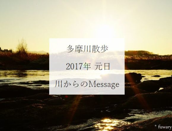 20170101-tamagawa-message