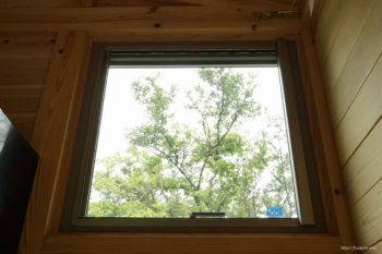 窓から緑が見えます♪
